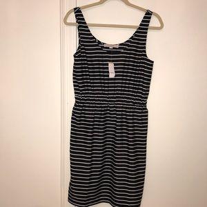 Ann Taylor LOFT black and white stripe dress.